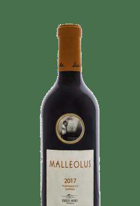 malleolus754761